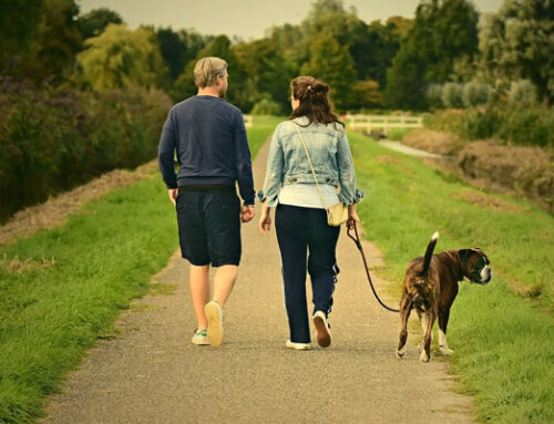 Walking is Good for Feet and Health